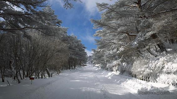 デリカスペースギアで雪道 at えびの高原 02